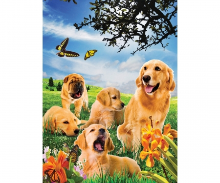 Puzzle 500 pcs with 3D effects - Dogs