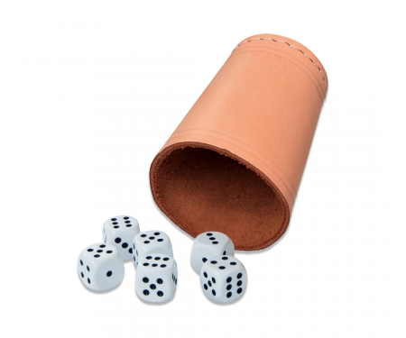leatherdicecup with 6 dice