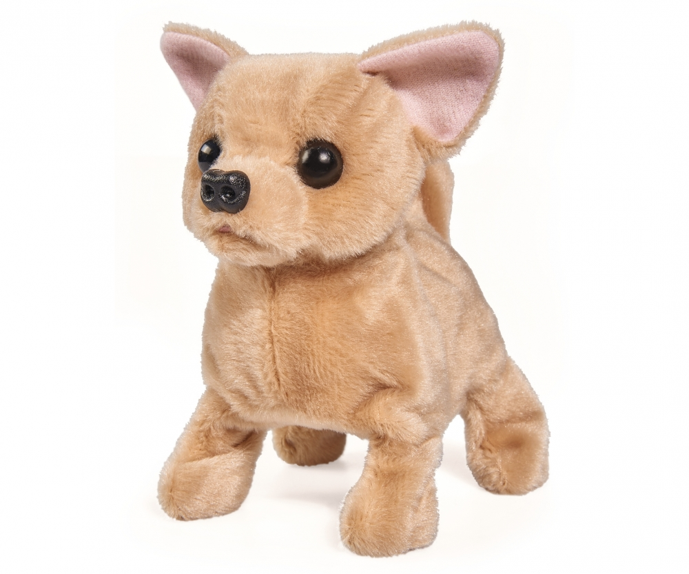 Ccl Baby Puppy Chi Chi Love Brands Shopsimbatoysde