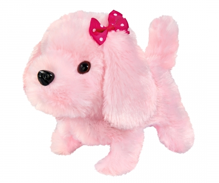 CCL Little Puppy