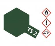 TS-2 Dunkelgrün matt 100ml