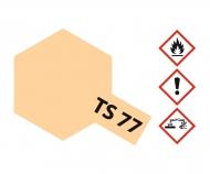 TS-77 Fleischfarben matt 100ml