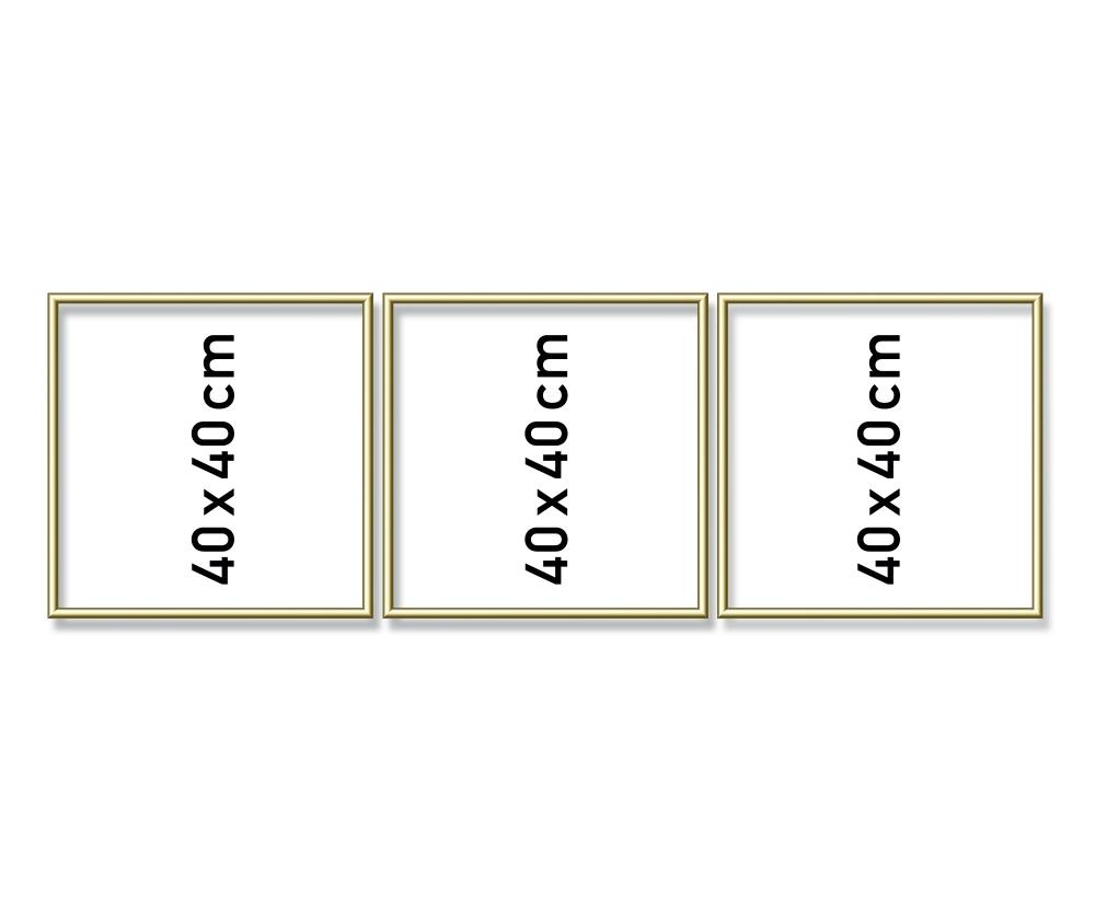 alurahmen triptychon 40 x 120 cm aluminium bilderrahmen zubeh r. Black Bedroom Furniture Sets. Home Design Ideas