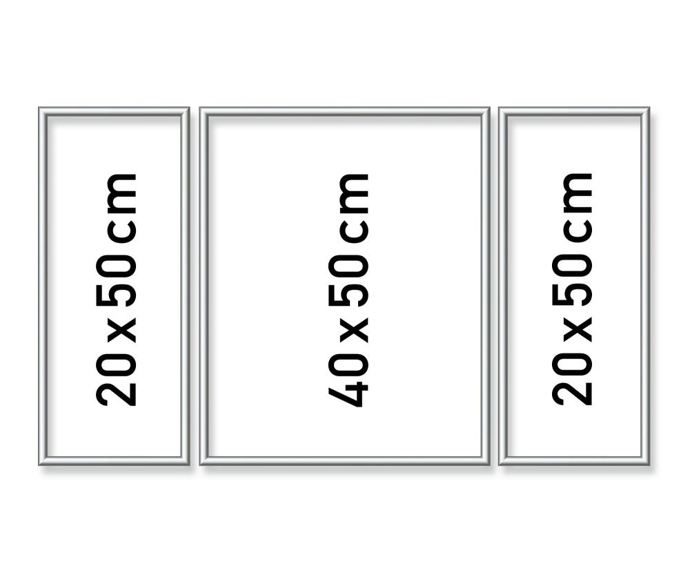 Alurahmen Tritpychon 50 x 80 cm – Silber matt - Aluminium ...