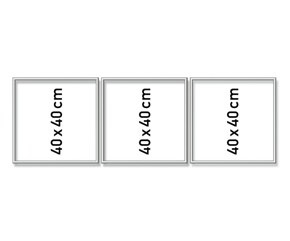 Aluminium frame Triptych 120 x 40 cm – mat silver - Picture frames ...