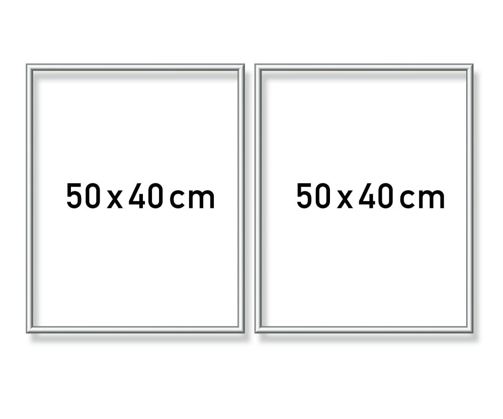 Alurahmen Diptychon 50 x 80 cm – Silber matt - Aluminium ...