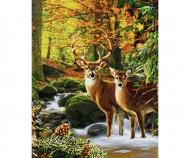 Hirsche im Wald