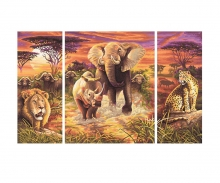 Afrika – The Big Five