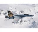 """carson 1:72 F/A-18 Hornet """"Tiger Meet 2016"""""""
