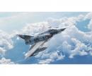 carson 1:32 Mirage III E/R