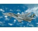 carson 1:48 F-14A TOMCAT