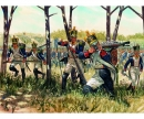 carson 1:72 Napoleonic Wars - French Infantry