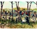 carson 1:72 Napoleon.Kriege - Franz.Infanterie