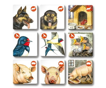 noris_spiele Memo Trio farm animals