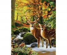 schipper Les cerfs en forêt