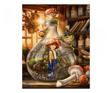 schipper The gnome