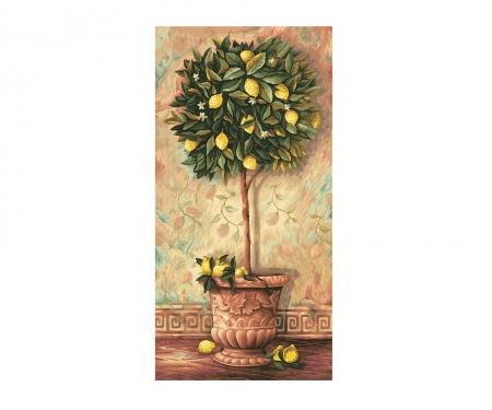 schipper Lemon tree