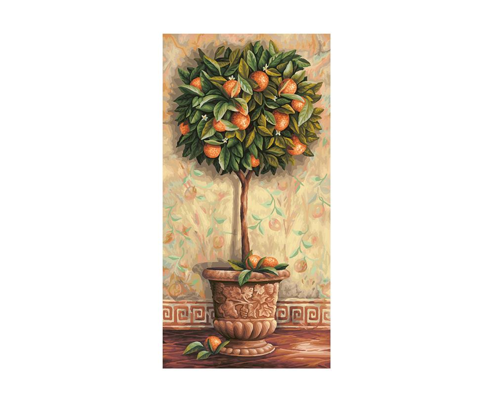 orangenb umchen blumen und pflanzen malthemen. Black Bedroom Furniture Sets. Home Design Ideas