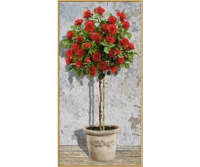 schipper Red Rose Tree