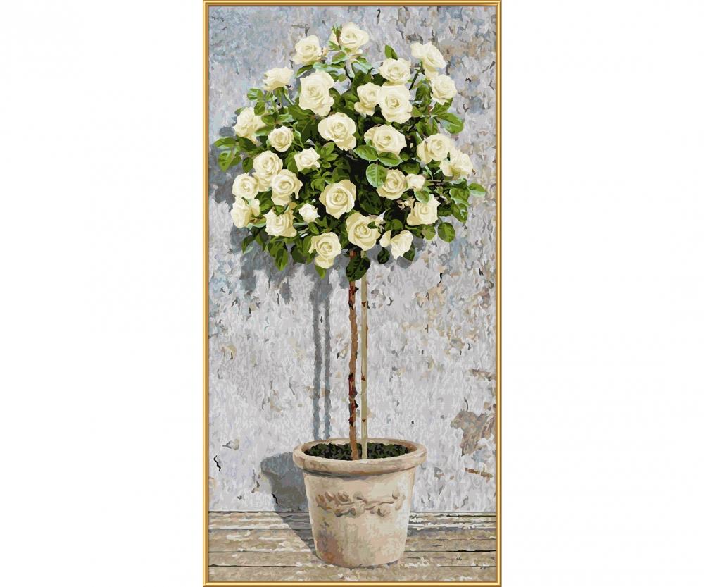 Rosenb umchen wei blumen und pflanzen malthemen www for Blumen und pflanzen bestellen