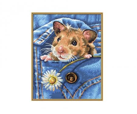 schipper PBN - Golden hamster