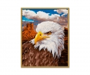 schipper Bald Eagle