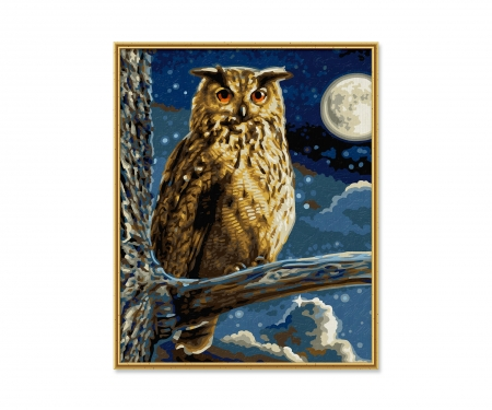 schipper The Eagle Owl – Lord of the Night