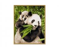 schipper Pandas