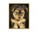 schipper Yorkshire Puppy / Welpe Malen nach Zahlen Vorlage