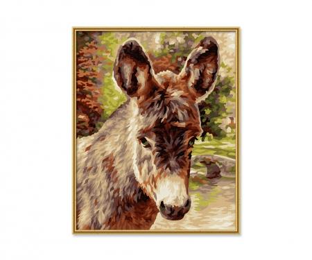 schipper Baby donkey
