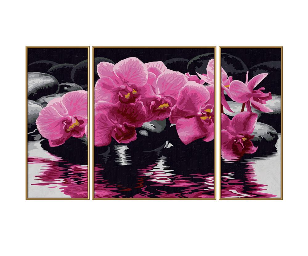 orchideen blumen und pflanzen malthemen. Black Bedroom Furniture Sets. Home Design Ideas