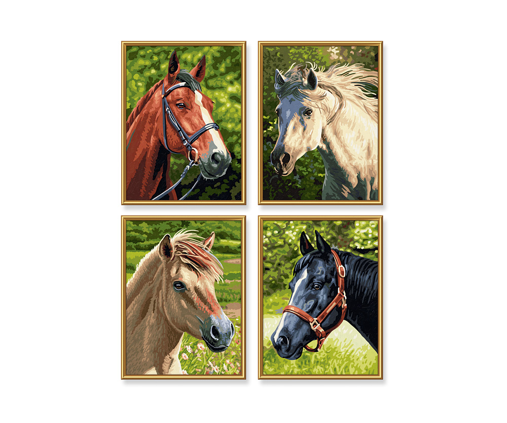 pferde  pony malen nach zahlen  quattro 18 x 24 cm