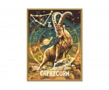 schipper Capricorn