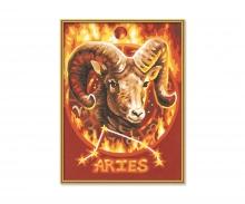 schipper Aries