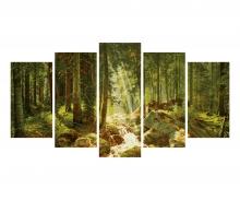 schipper Notre forêt
