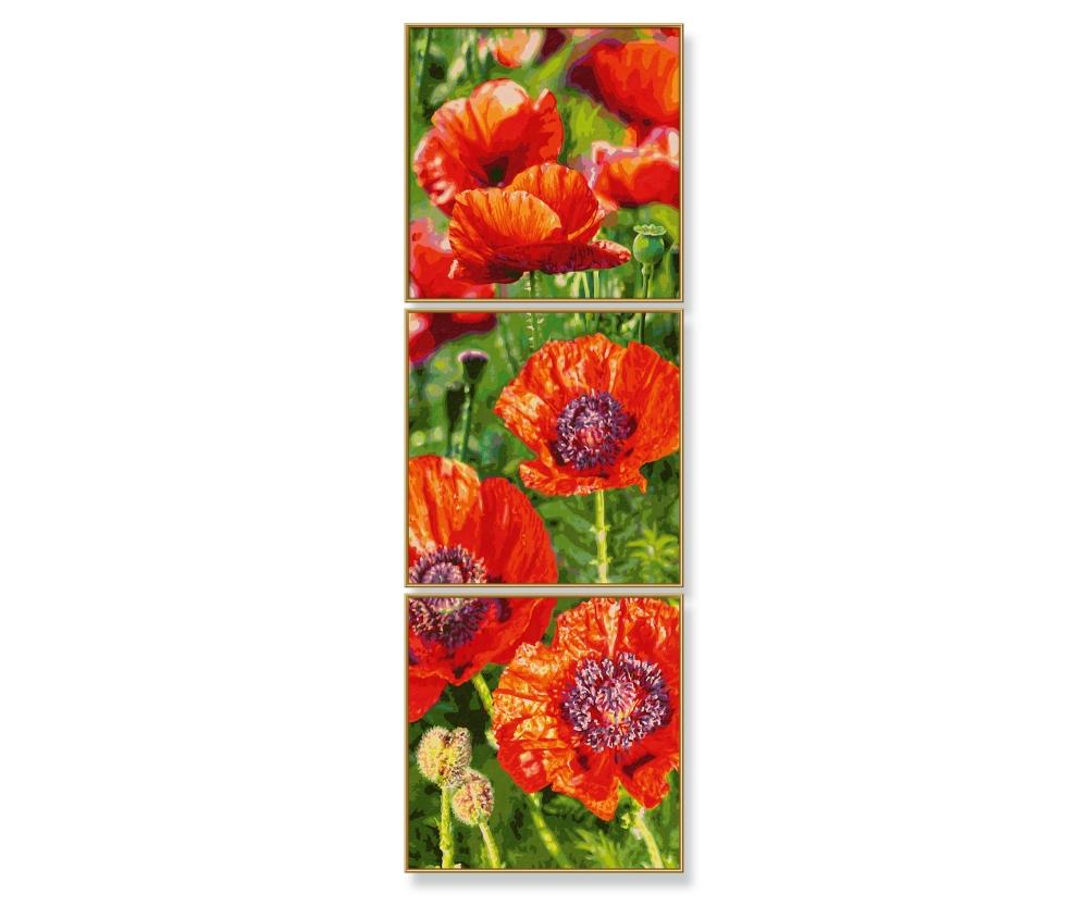 Mohnblumenwiese Triptychon 40 X 120 Cm 3 Teilig Bildformate