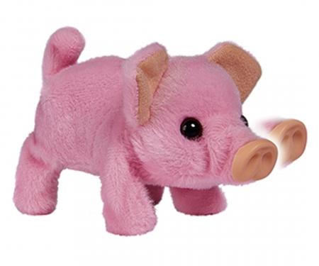 simba CCL Mini Pig
