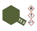 TS-5 Olive Drab 1 Flat 100 ml